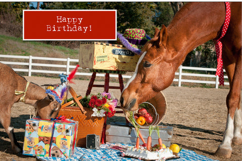 Goat and Horse Birthday Card