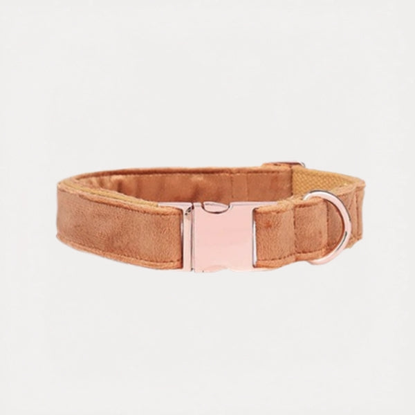Burnt Orange Velvet Dog Collar - FURRY BETCH