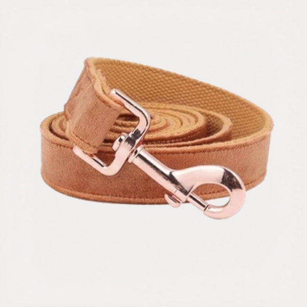 Burnt Orange Velvet Dog Leash - FURRY BETCH