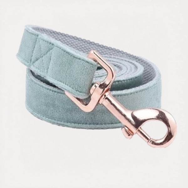 Sea Green Velvet Dog Leash - FURRY BETCH