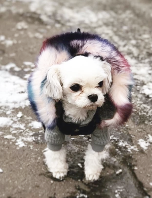 You Look Furbulous Coat - FURRY BETCH