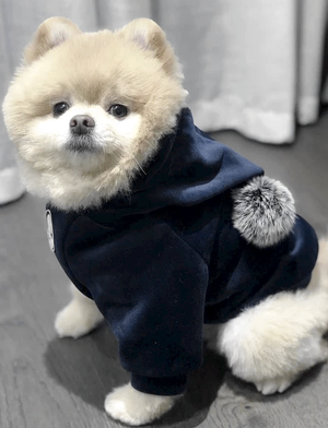 You're the Pom Hoodie - FURRY BETCH