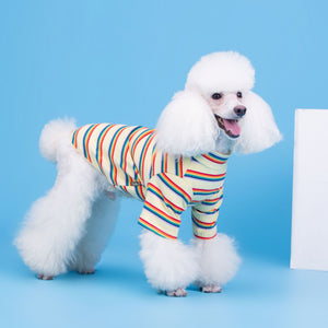 Retro Rainbow Ribbed Top - FURRY BETCH