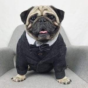 Need For Tweed Sport Jacket - FURRY BETCH