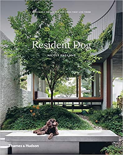 Resident Dog: Incredible Homes and the Dogs That Live There - Nicole England