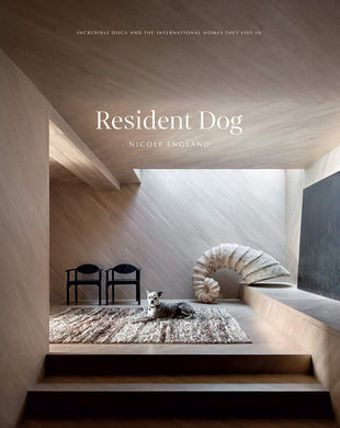 Resident Dog by Nicole England