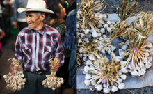 Load image into Gallery viewer, Oaxaca: Home Cooking from the Heart of Mexico