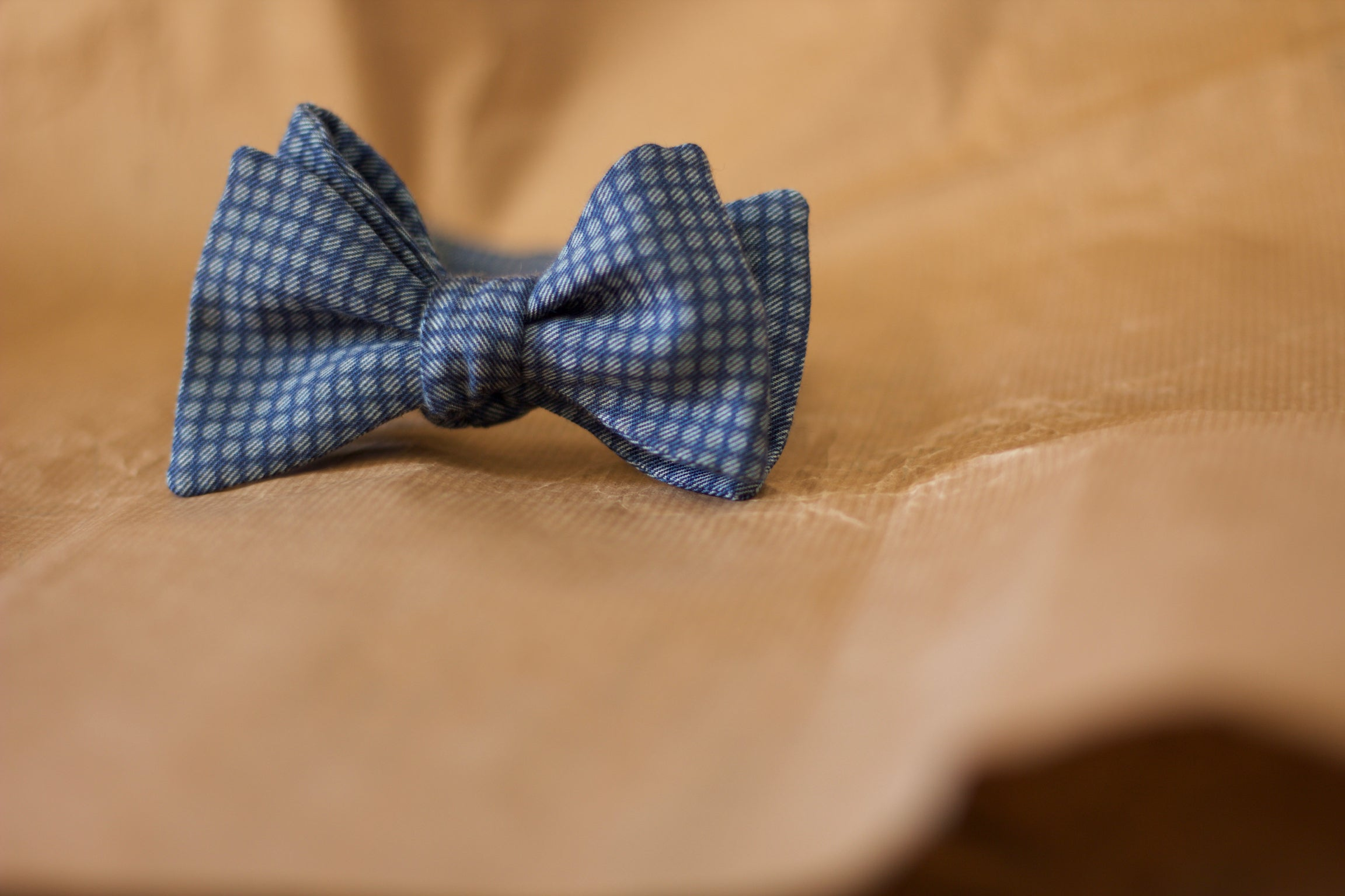 Noodles - Bow Ties - Cotton - Indigo and olympic blue coin dots