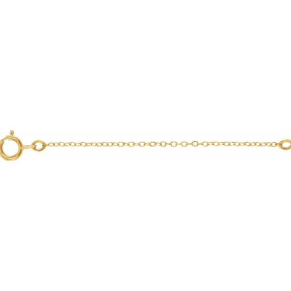 14KT Yellow Gold Safety Chain Extender with Spring Ring 2.25