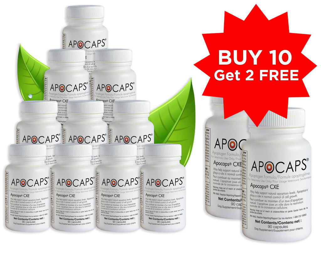 Apocaps CXE - Buy 10, get 2 Bottles FREE