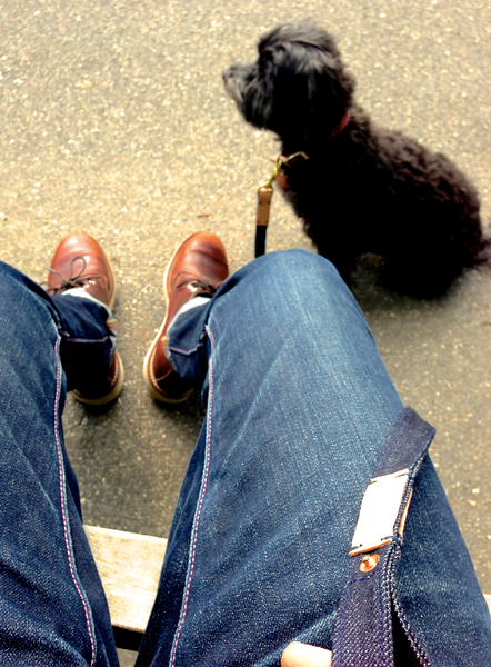 Raw Denim And Leather Dog Leash