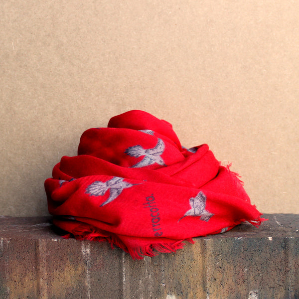 Harlow Hummingbird Cashmere Scarf - Terracotta New York