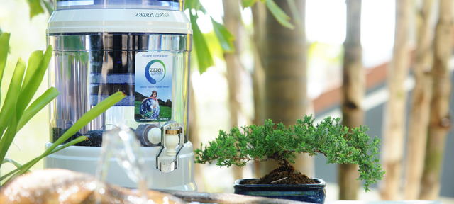 How Does An Alkaline Water Filter Work?
