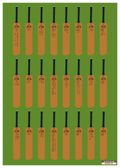 A History of the Ashes in 24 Bats