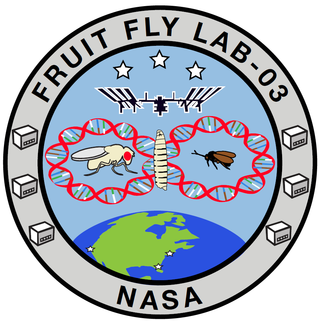 FFL-03 Mission Patch