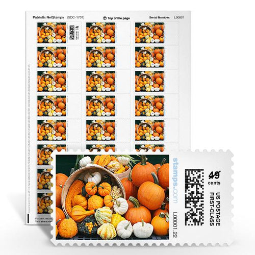 Pumpkins Galore NetStamps<sup>&reg;</sup>