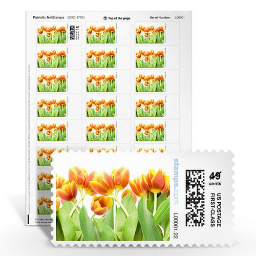 Spring Blossoms NetStamps<sup>&reg;</sup>