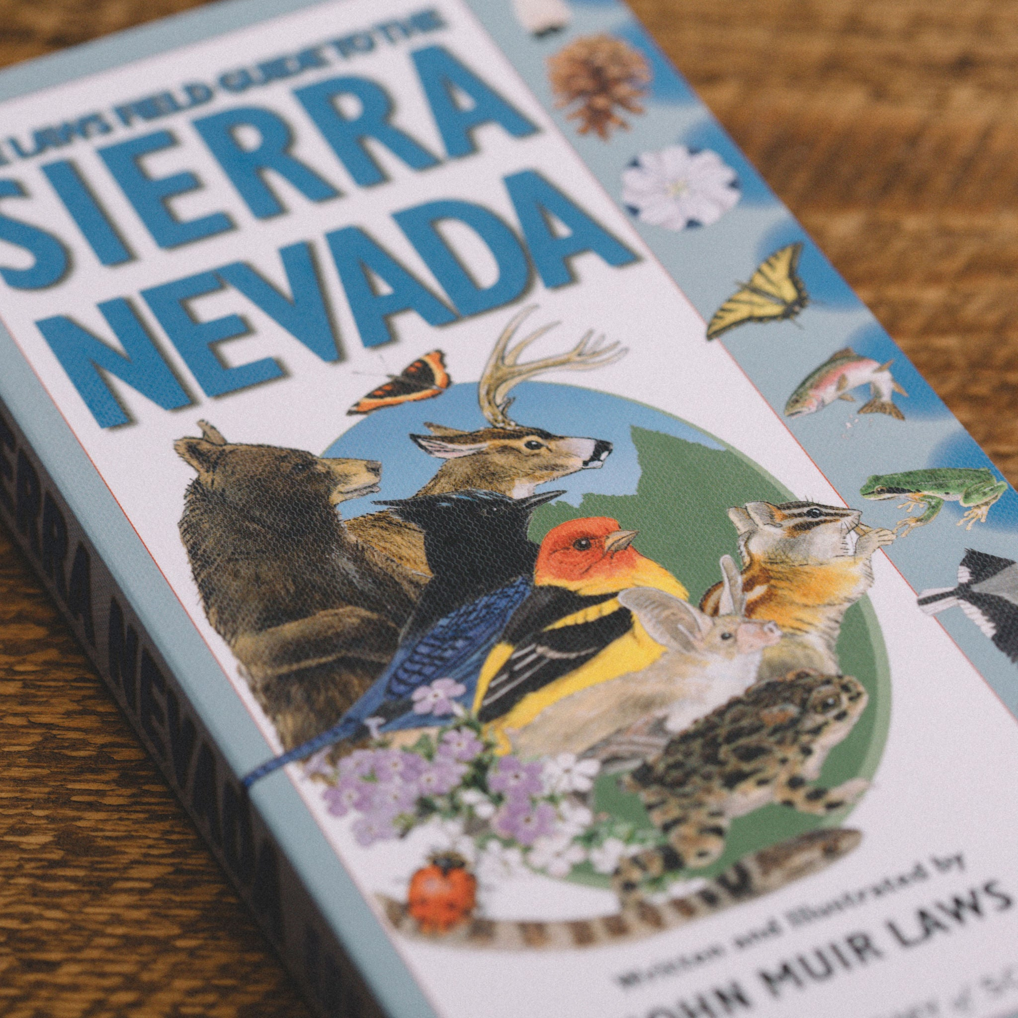 THE LAWS FIELD GUIDE TO THE SIERRA NEVADA || JOHN MUIR LAWS