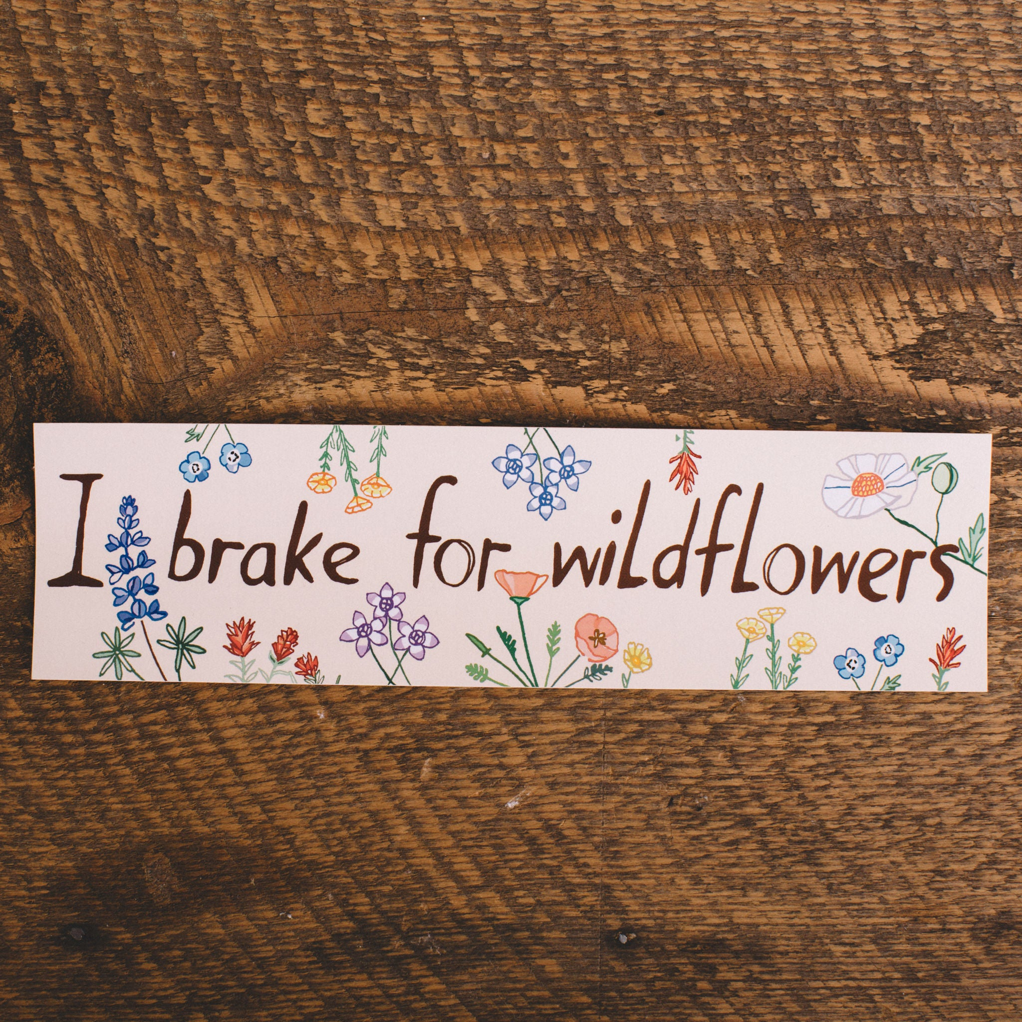 MARIA SCHOETTLER || WILDFLOWERS BUMPER STICKER