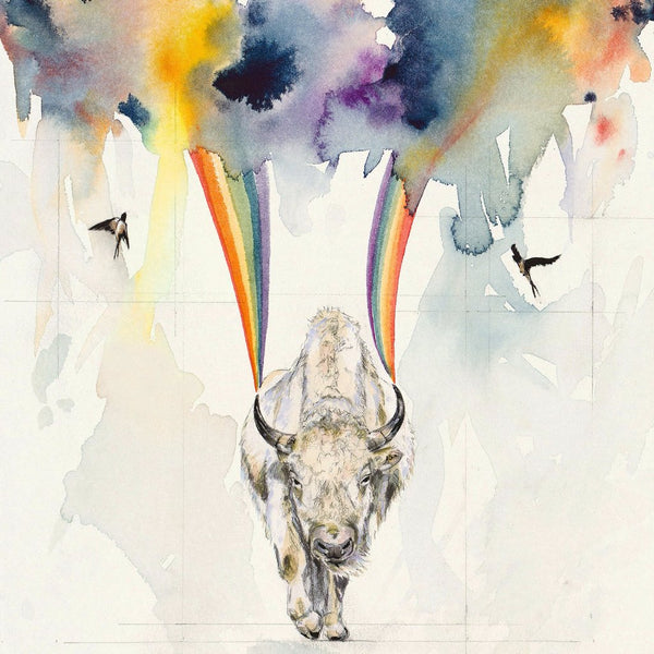 BECKY JOHNSON || WHITE BISON + SWALLOW STORM