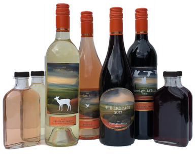 Virtual Tasting Kit - Ripasso Sampling