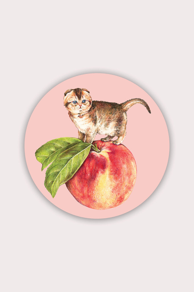 Peach Cat Vinyl Sticker