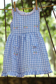 Blue checkered Strawberry Dress