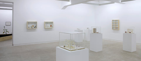 Gianfranco Baruchello, La Formule, Installation view, 2009/2010, Galerie Michael Janssen Berlin