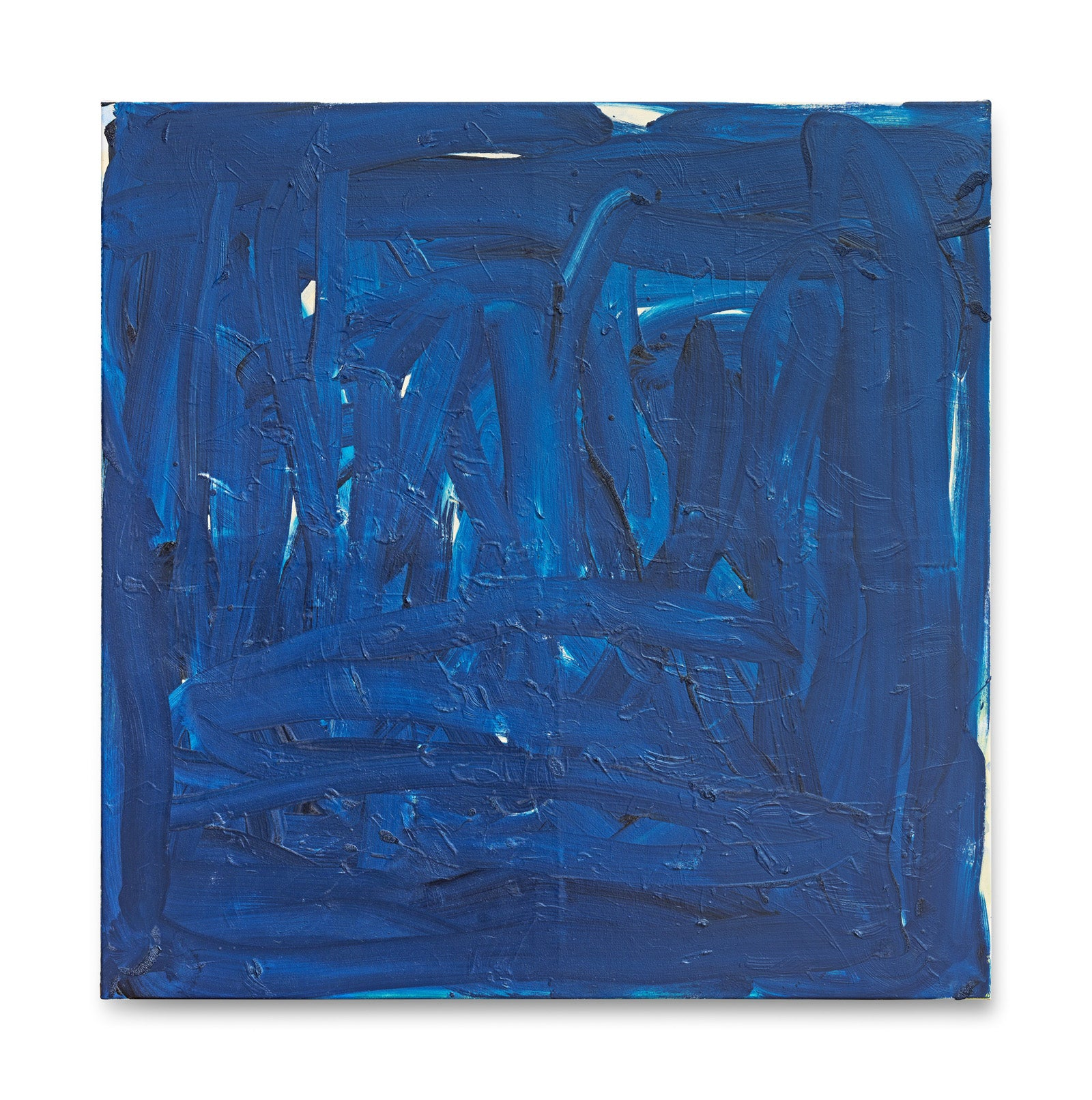 Lizza May David, Blue Cover, 2016
