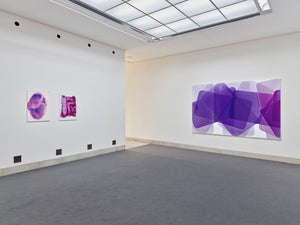 Peter Zimmermann, Paint it, Installation view, 2019, Galerie Stadt Sindelfingen