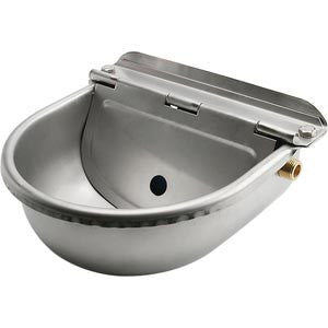 BUY A STAINLESS STEEL WATER BOWL