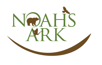 Noah's Ark Animal Sanctuary