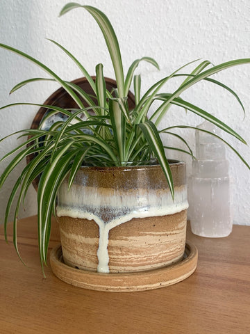 38 Foamy Drip Marbled Planter Pot with Drip Tray