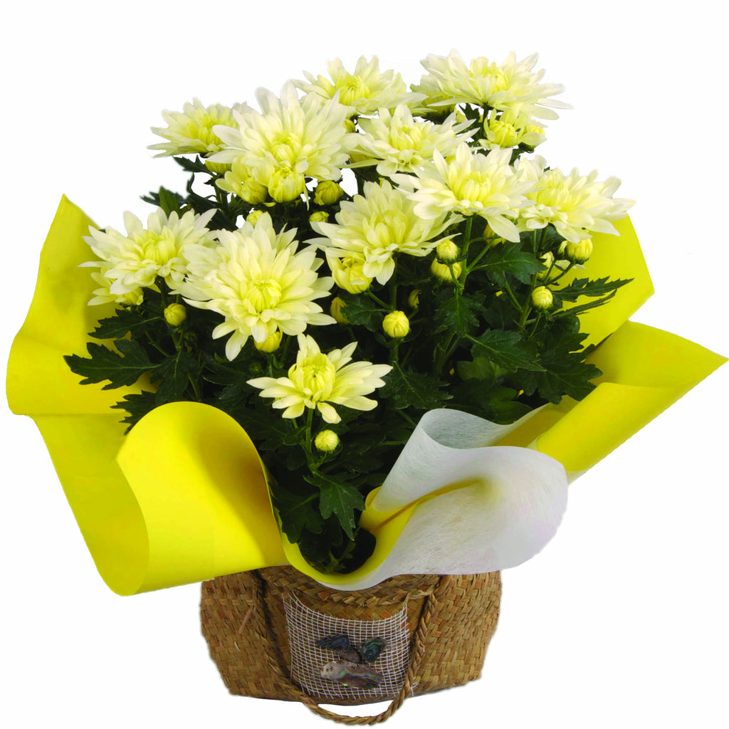 Chrysanthemum Kite Bag