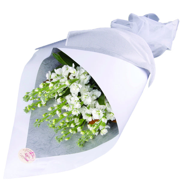 White Stock Bouquet