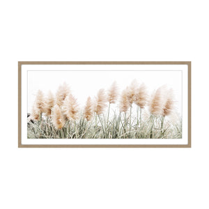 Pampas  Grass Rectangle