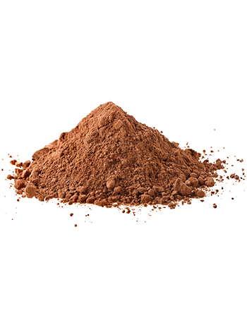 Chocolate Powder 1Kg