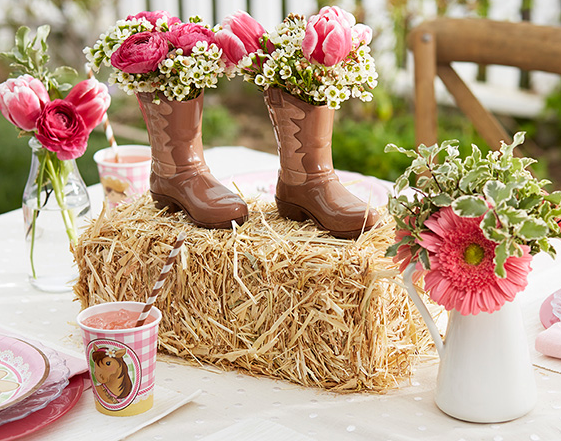 Buy Cowgirl Party Supplies Online At Build A Birthday NZ