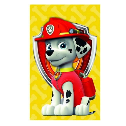 Buy Paw Patrol Party Supplies Online At Build A Birthday NZ