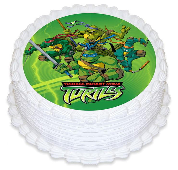 Teenage Mutant Ninja Turtle Cake Image | TMNT Party