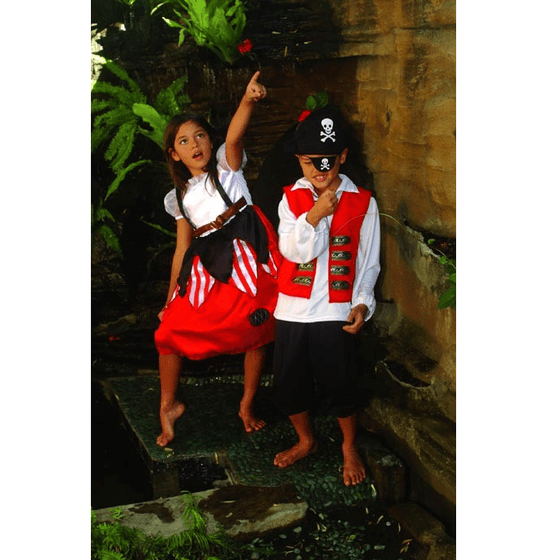 Pirate Costume | Pirate Party Theme and Supplies