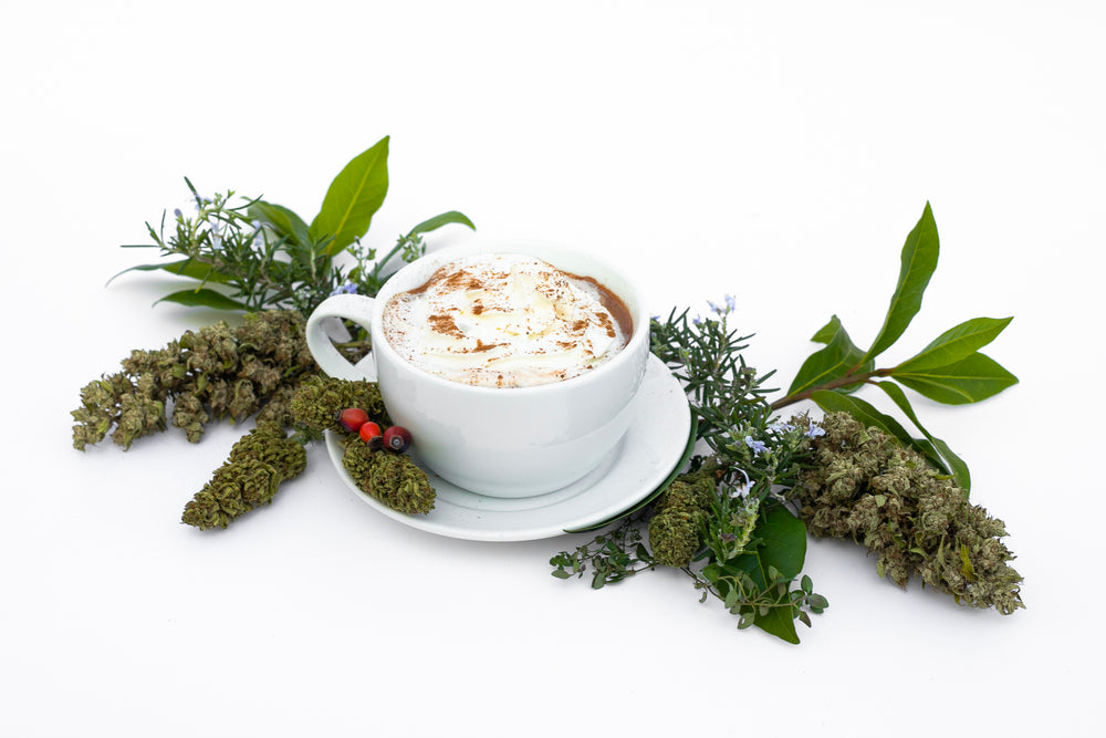 Cup of Spice of Life Hot Cocoa cbd cbg mix hemp