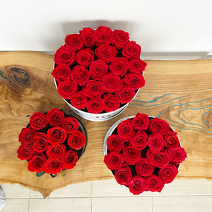 Preserved Eternity Roses in a Round Box