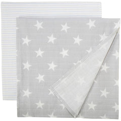Aden and Anais - Premium Flannel Cozy Swaddles Fate 2PK