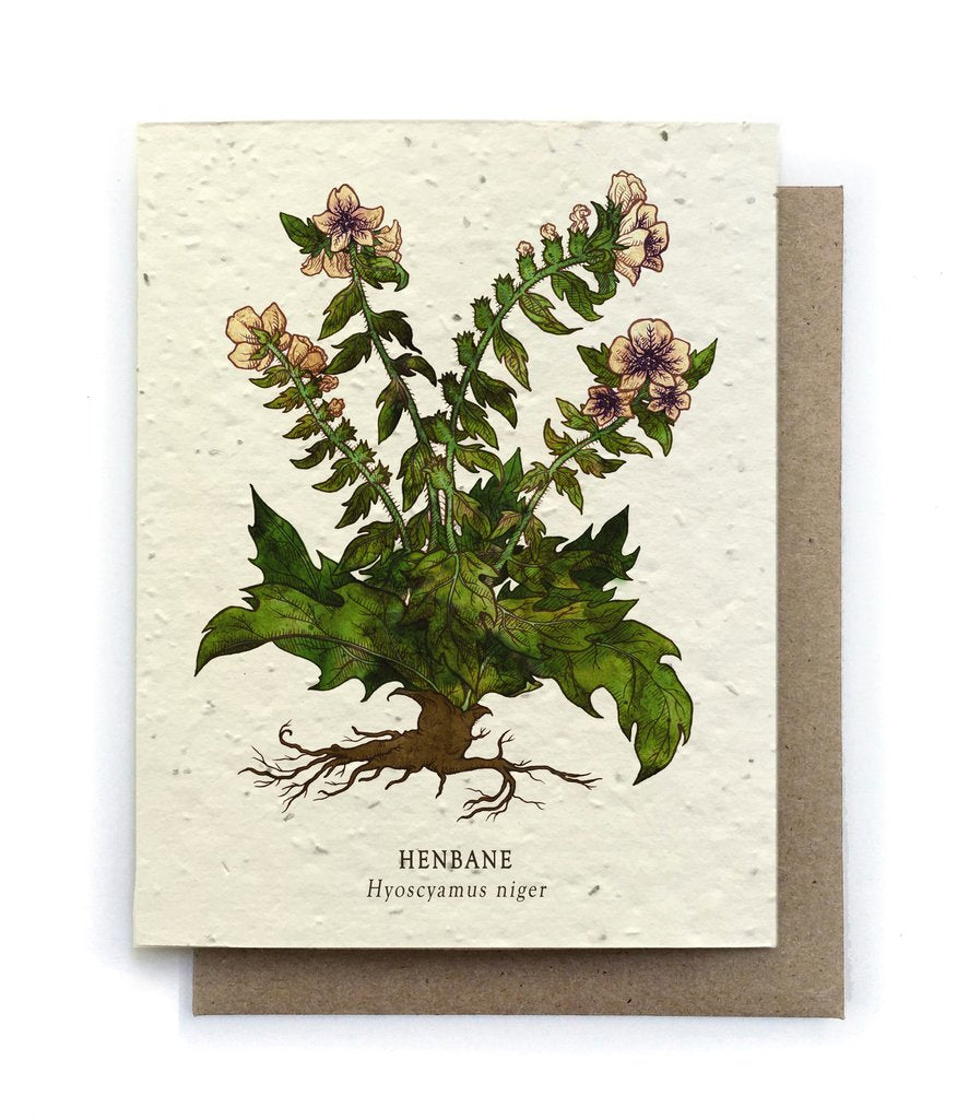 The Bower Studio - Henbane Botanical Greeting Cards - Plantable Seed Paper