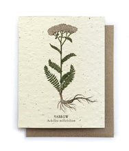 Load image into Gallery viewer, The Bower Studio - Yarrow Botanical Greeting Cards - Plantable Seed Paper