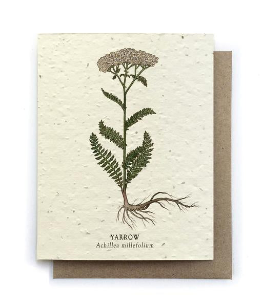 The Bower Studio - Yarrow Botanical Greeting Cards - Plantable Seed Paper