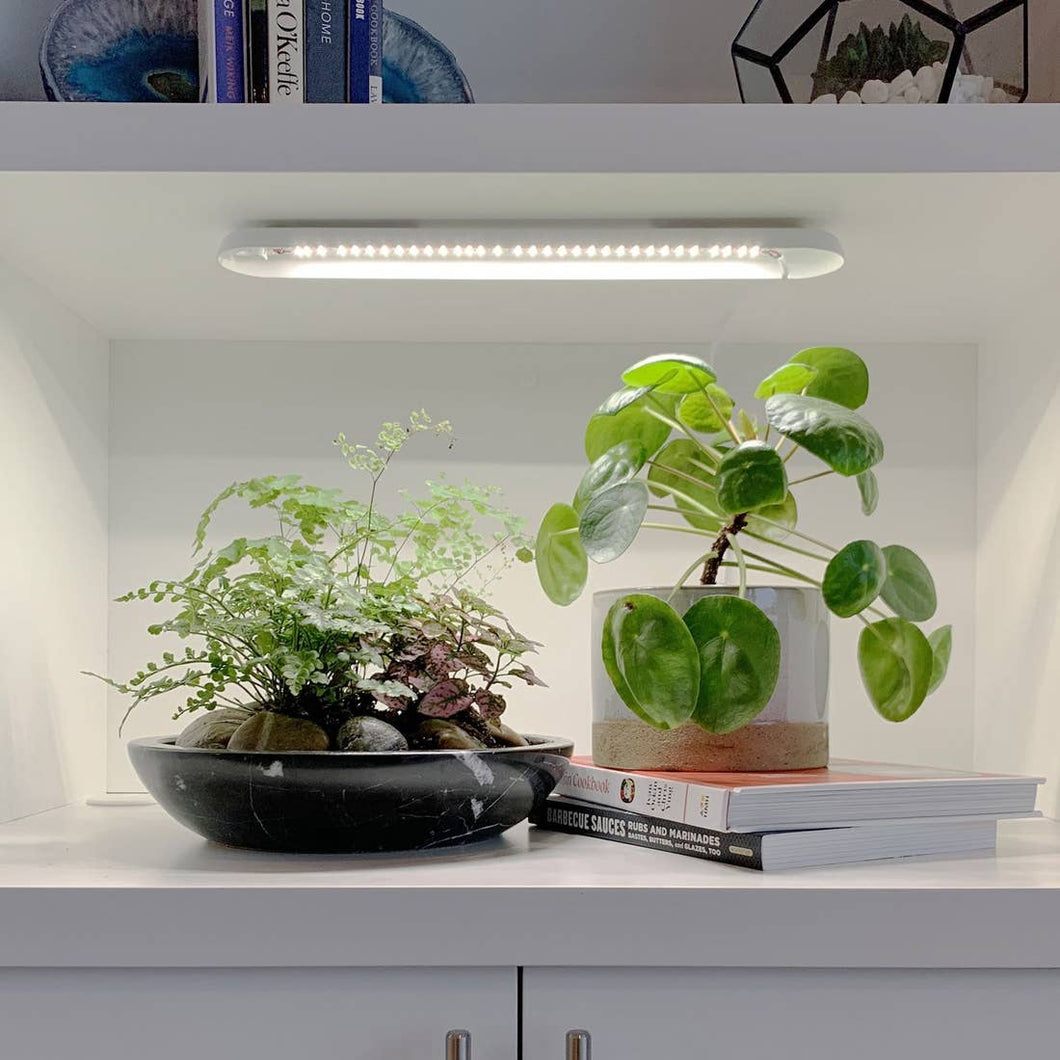 Modern Sprout - Smart Growbar - Matte White