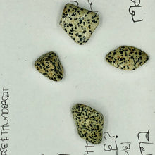 Load image into Gallery viewer, Dalmatian Jasper