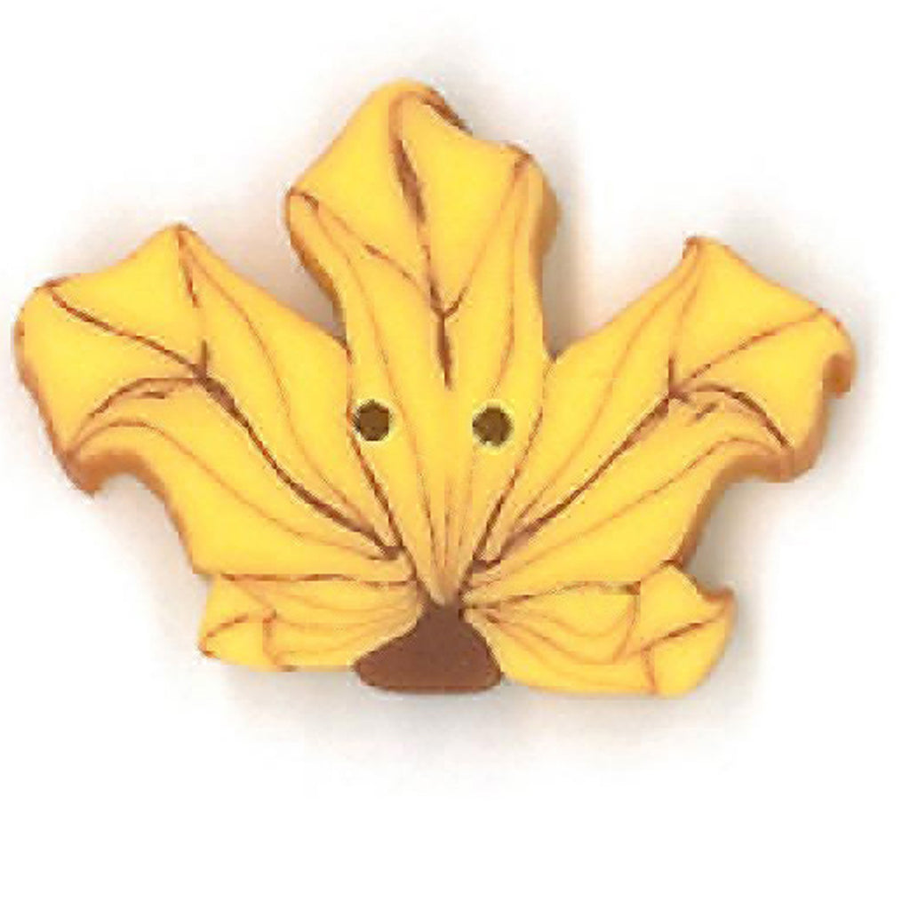 small yellow maple leaf